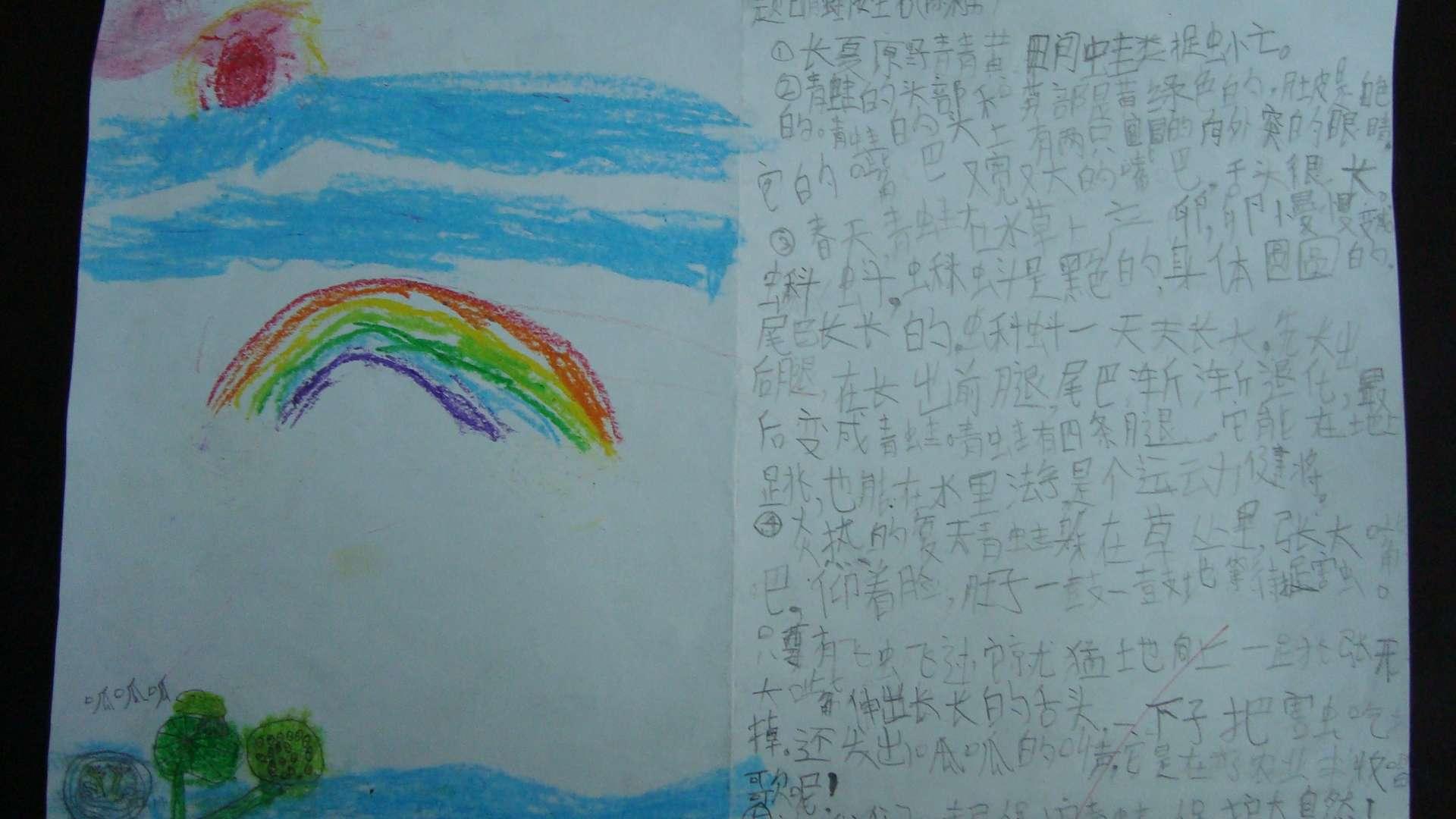 陈柯男 青蛙 锦官驿小学三年级4班
