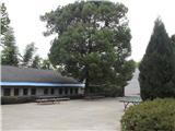 乒乓球场(白水校区)