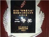 省艺术节二等奖