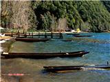 春到泸沽湖 (1)