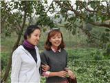 肖老师和MISS wei