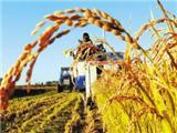 农业的变化图片6