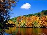nature_fall_colors_33140_2