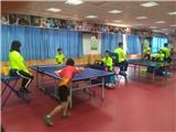 乒乓球比赛 (4)