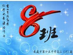 甘肃武威第十五中学(高)三年级8