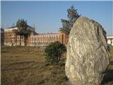 学校风景线 (28)