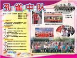 孔雀中队(2012)