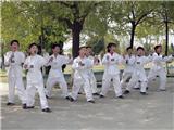 跆拳道社团