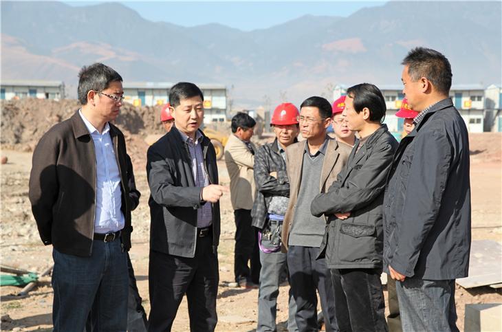 李市长看项目 (24)