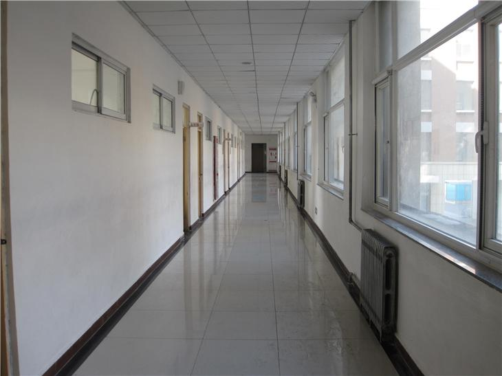 学校风景线 (3)